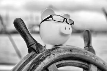 Sparschwein am Steuer